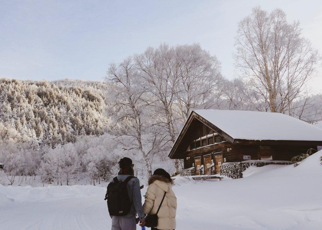 Para na śniegu
